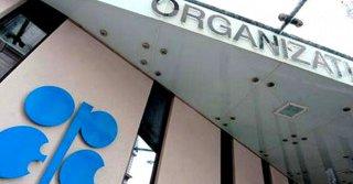 Opep acordó en Viena trazar medidas que estabilicen el mercado